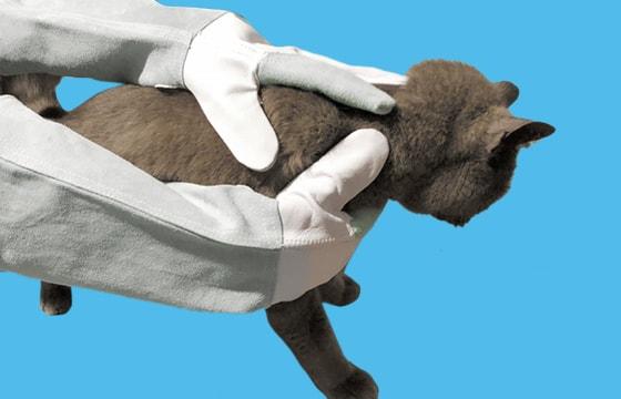 Schutzhandschuhe für Kleintiere