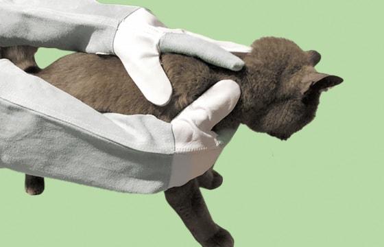 Beschermende handschoenen