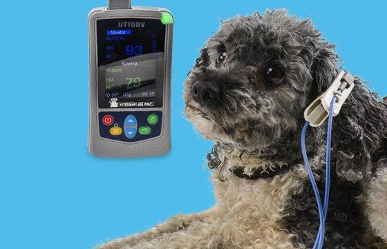 UT100V Oxímetro de pulso veterinario