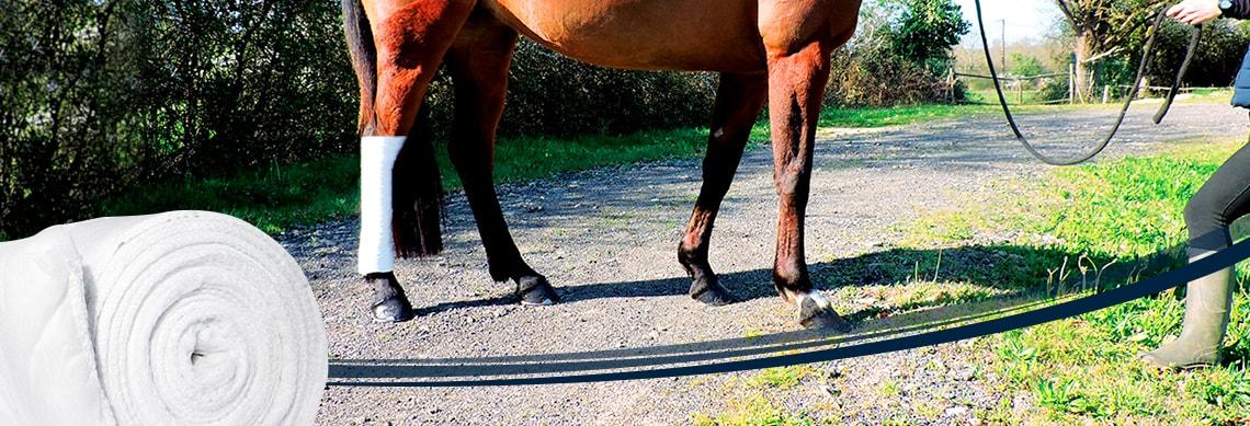 Cotone garzato per cavalli