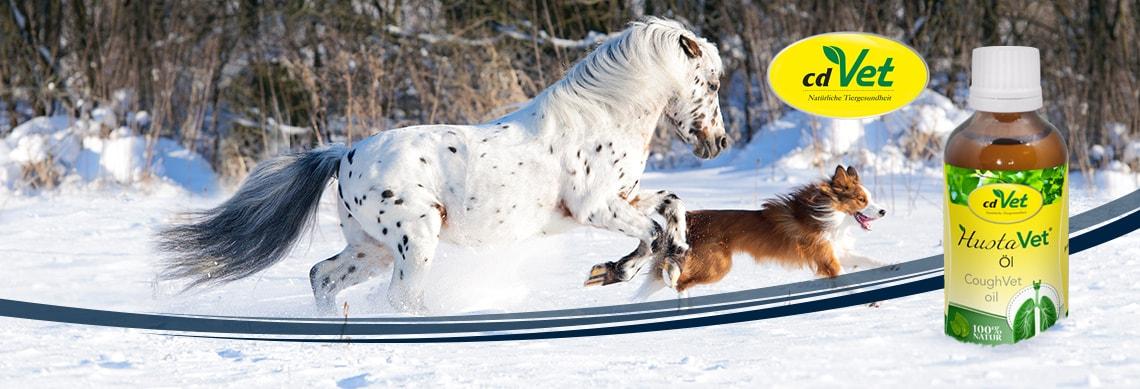 HustaVet für Hund & Pferd