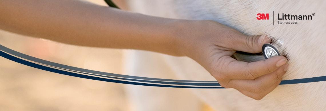 Littmann® Stethoskope für die Tiermedizin
