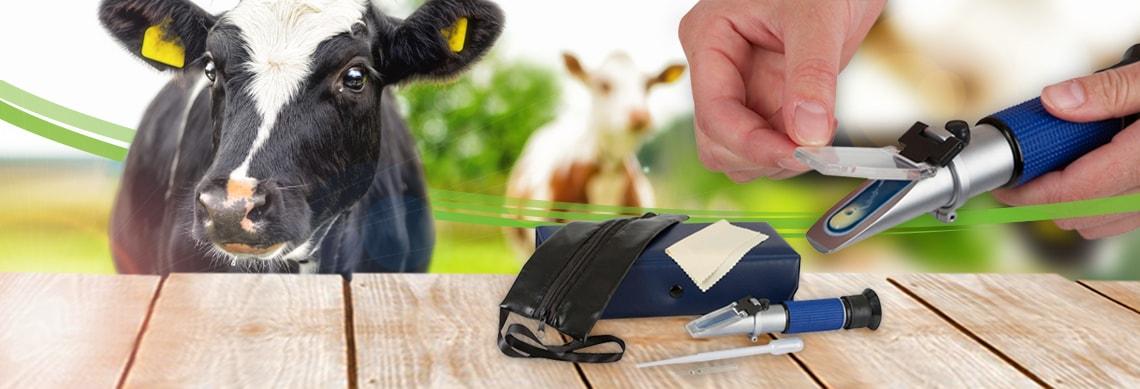 Refraktometer für die Tiermedizin