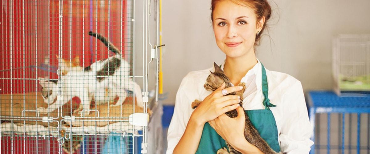 Tierheimbedarf